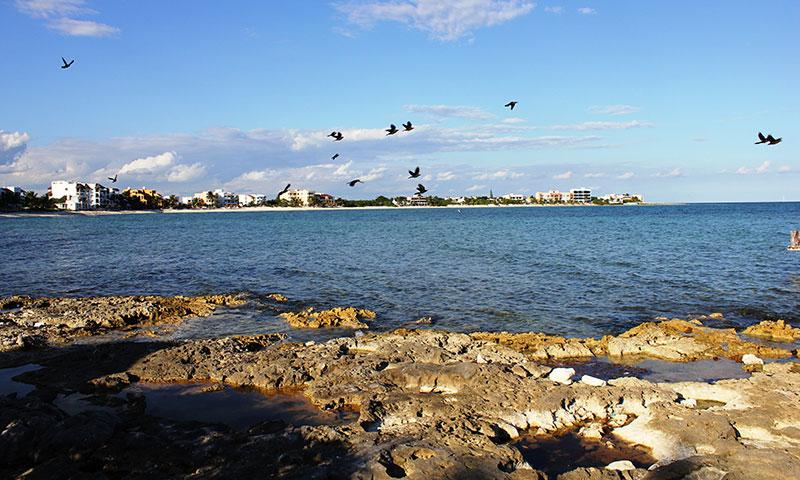 Villa kokobeach half moon bay akumal mexico for Half moon bay pier fishing